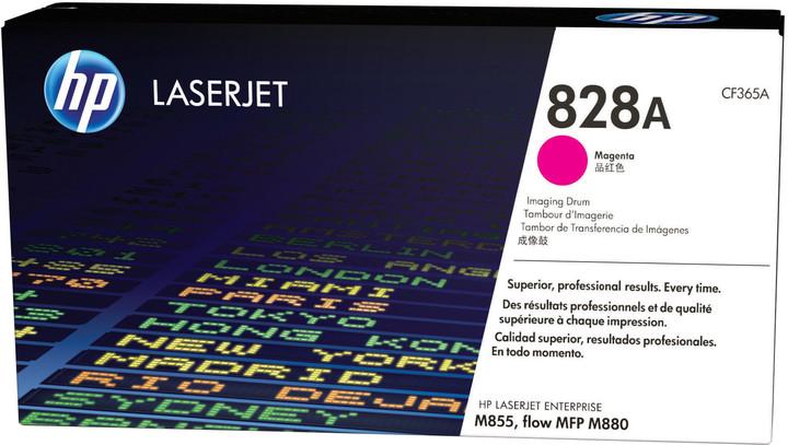 HP CF365A, magenta