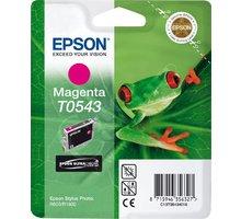 Epson C13T054340, purpurová