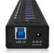 ICY BOX IB-AC6113, USB 3.0 Hub, 13-Port