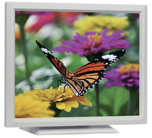 "iiyama ProLite T1731SR-W2 - LCD monitor 17"" - T1731SR-W1"
