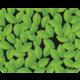 Podložka pod myš Trust Eco-friendly, zelená v ceně 230 Kč