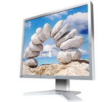 """EIZO FlexScan S1933H-GY - LED monitor 19"""""""