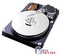 Samsung SpinPoint P Series SP1634N - 160GB 8MB